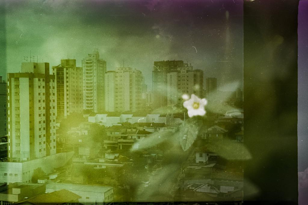 2015 07 PentaxSpotmatic vs OlympusTrip KodakEktachrome SãoPaulo vs Londrina Guilherme vs Gabi 02